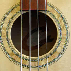 Fretless acoustic bass - Rosetta