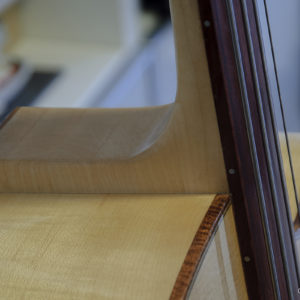 Fretless acoustic bass - Heel