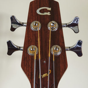 Fretless acoustic bass - Head